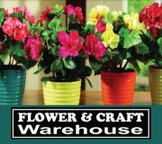 Click to visit Blue Ball's Flower and Craft Marketplace